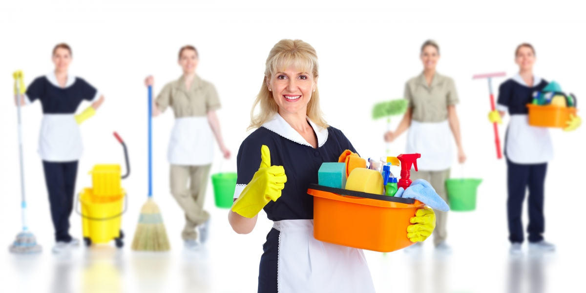 bigstock-cleaner-maid-woman-isolated-o-25427261.jpg